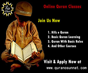 How to Learn Quran o Sunnat? Website Review