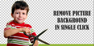 How to Remove Image Background Easily?