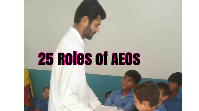 Top 25 Roles of Assistant Education Officers in Punjab Government School Department