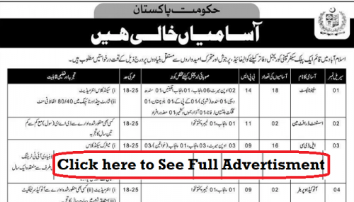 Federal Govt Public Sector Organization Jobs July 2019 for Primary to Intermediate