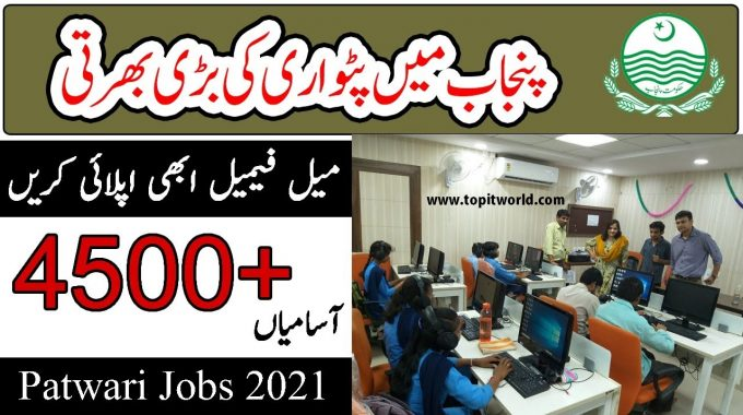 Patwari Jobs in Punjab 2021 | Download Application Form for Patwari Jobs