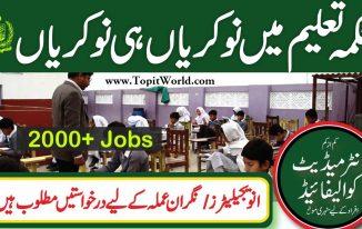 PEF Invigilator Jobs 2021 for Examination across the Districts of Punjab Pakistan
